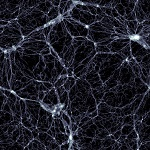 Illustris simulation - distribution of dark matter